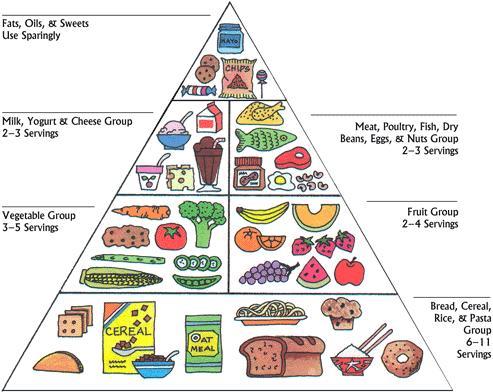 healthy-food-pyramid.jpg