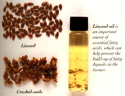 how to eat linseed oil
