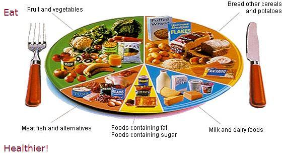 south-beach-diet-plan.jpg